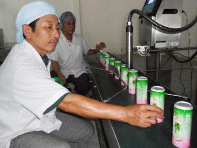 Bình Thuận: Hiệu quả ứng dụng công nghệ mới vào sản xuất